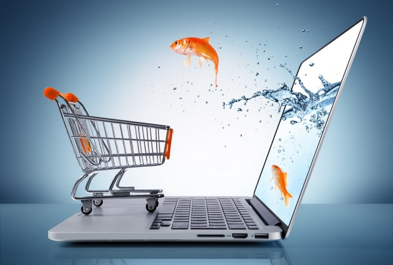 Wzrosty cen w sklepach stacjonarnych zachęcają Polaków do zakupów online